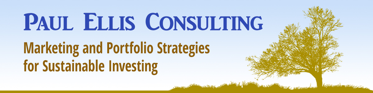 Paul Ellis Consulting